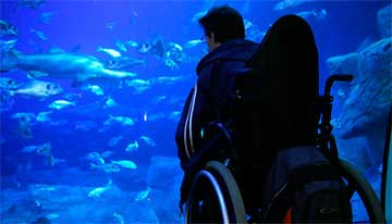 Revitalise guest in wheelchair on excursion at the aquarium